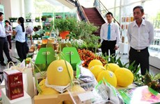 Agriculture festival introduces farmers' outstanding products