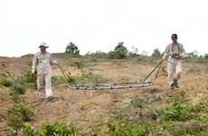 UXO impact settlement efforts bolstered in Da Nang city