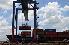 Dubai-based port operator vows to expand business in HCM City