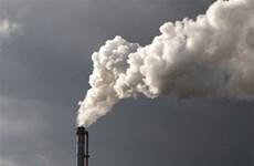 PM approves plan for 3.6 million USD carbon market