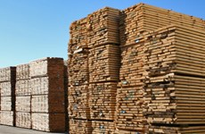Chile plans timber exports to Vietnam