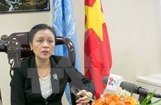Vietnam supports UN peacekeeping efforts