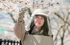 Vietnam, Japan to produce drama film