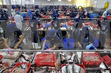 Vietnam takes advantage of staples when joining TPP