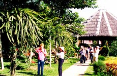 Cultural events to promote Mekong Delta tourism