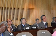 Foreign Ministry spokesman hails Vietnam's election to UNESCO