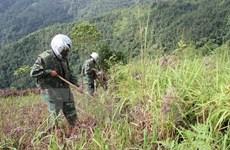 RoK helps Vietnam train mine clearance personnel