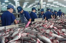 Tra fish export to China enjoys strong growth