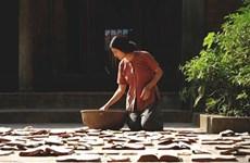 Free screenings at Vietnam Film Festival