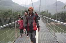 Nearly 500 bridges built in Central Highlands