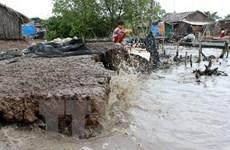 Thua Thien-Hue sees serious seawater encroachment