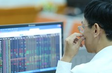 Vietnamese shares decline for second day
