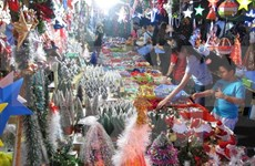 Made-in-Vietnam products dominate seasonal market in Can Tho