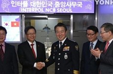 Korean, Vietnamese police launch special teams for expats