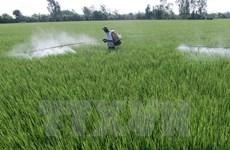 Project destroys Vietnam's pesticide stockpiles
