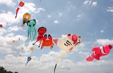 Kite festival rings in New Year