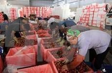 Vietnam pilots self-certification of goods within ASEAN