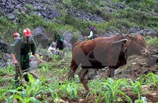 Central Highlands strives for sustainable poverty reduction