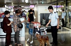 Noi Bai Airport strengthens customs checks before Tet