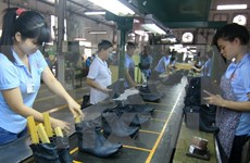 FTAs bring great opportunities to leather sector: official
