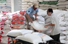 Vietnam hopeful about rice export in 2016