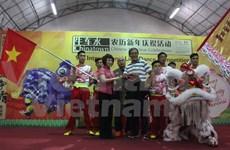 Vietnam attends 9th International Lion Dance Competition