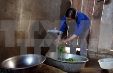 Dak Lak: Over 85.5 percent of rural residents access clean water