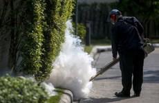 Thailand calms public fear over Zika virus