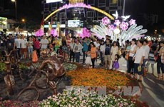 HCM City celebrates Tet with special art performances