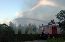 Wildfire at Hoang Lien National Park successfully controlled