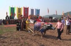 Festivals pray for good harvest in new year
