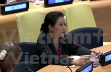 Vietnam continues to work with UNDP to realise SDGs: Ambassador