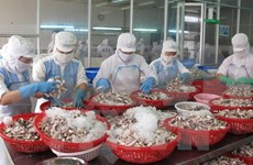 Vietnam's PMI declines in February