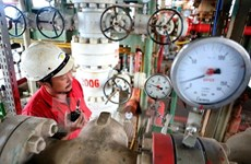 Vietsovpetro works to ensure oil exploitation plan