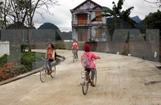 Provinces target more new-style rural communes