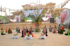 Laos, Thailand to join flower festival in Dien Bien