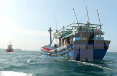 Vietnam liaises with China to rescue fishermen in distress