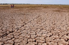 Binh Thuan province dries up in severe drought