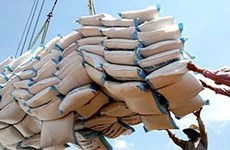Rice exports jump as more of last year's orders filled