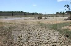 Kon Tum declares drought emergency level 1
