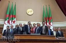 Vietnam, Algeria cement legislative ties
