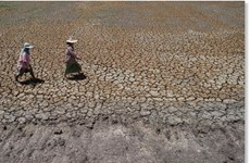 Thailand faces extreme drought