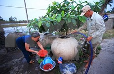 Mekong Delta localities supported in searching fresh water