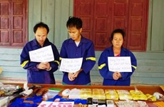 Vietnamese, Lao localities join hands in drug prevention