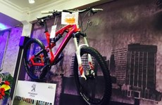 Bianchi, Dahon Folding bicycles hit Vietnamese market