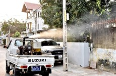 Khanh Hoa takes drastic measures to curb dengue fever, Zika virus