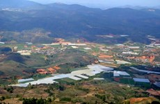 Da Lat plans to build 490ha safari park
