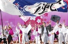 First Japanese cherry blossom festival held in Da Nang