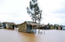 Bac Lieu invests in projects to cope with climate change