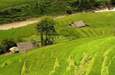 Vietnam's official online travel mart opens